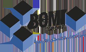 Bomi Group